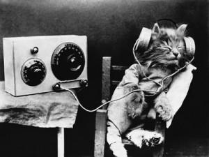 pet-radio